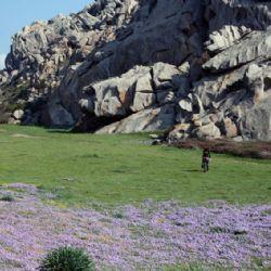 reportage Valle della Luna - prima valle