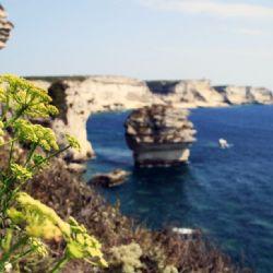 viaggio in Corsica - Bonifacio - reportage Roby Rossi