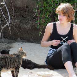 I gatti marini di Su Pallosu