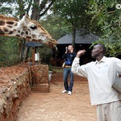 Langata Giraffa Park