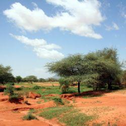 rosso argilla Mali