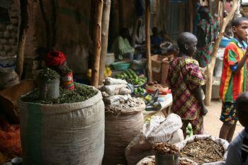 Viaggio nel Mali